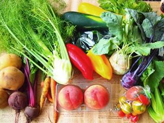 野菜について
