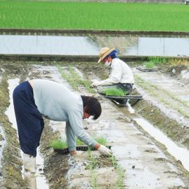 リーキで叶える『農業 + α(アルファ)』